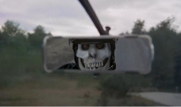 skull view mirror