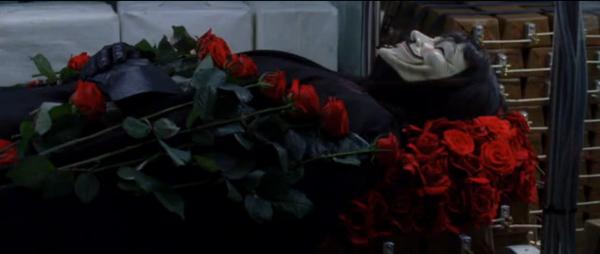 V roses