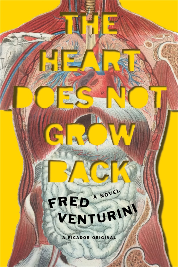 The Heart Does Not Grow Back