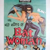 The Wild Wild World of Batwoman