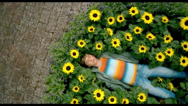 antboy-flowers